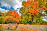 The colors of the park in autumn-by Kewin Coady