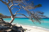 Corsica beach scene