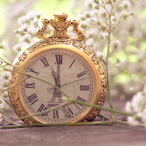 ☺ Pretty pocket watch...