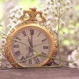 ☺ Pretty pocket watch...