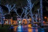 Arboles iluminados ,Italia