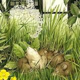 A Midsummer Mouse 2 ~ Debbie Faulkner - Stevens
