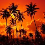 ☺ Sunset...