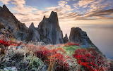 Mountain, rocks, wild vegetation, sunrise, sea, landscape