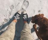 Chucks In The Snow
