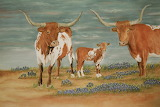 Texas Long Horn Cattle painting