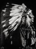Native 4