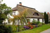Thatched - Photo from Piqsels id-ovgac