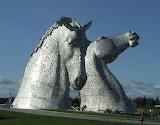Chevaux ecossais