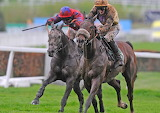 Tidal Bay and Daryl Jacob 2012 bet365 Gold Cup