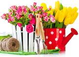 ☺♥ Gardening...