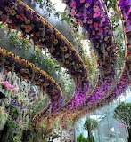 Flowers - Floral Fantasy Exhibition - Singapore