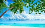 Tropical beach resorts-wallpaper-2560x1600