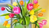 #Tulips