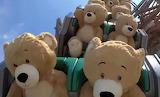 Teddy Bears having fun