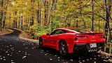 Autumn Corvette