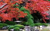 Grand-prince-hotel-takanawa-autumn-leaves