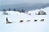 Slovakia - winter