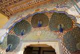 Peacocks Jaipur 2