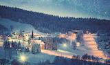 Winter night in Zieleniec