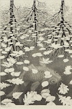 Escher - Tre mondi (1955)