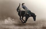 Ride'em cowboy