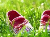 Тапочки в траве