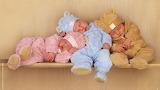 Babies, sleeping, shelf, outfit, costume