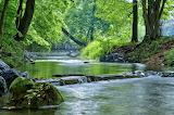 Mile 1111 Yellow Breeches Creek