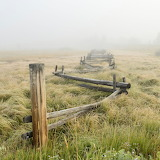 Foggy morning fence rural Idaho