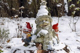 gnomes in the snowy garden