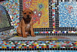 ColourfulLittlePersonality_LindaVonk