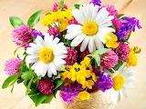 #Basket of Fresh Flowers