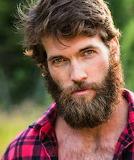 Itchy beard hurts