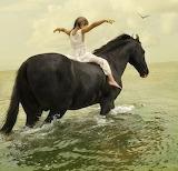 Riding a Seahorse