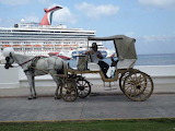 Horse and buggy at the cruise ship dock.