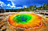 Colorful Morning Glory Pool Yellowstone USA