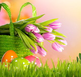 Flowers, basket, eggs, spring, Easter, tulips, grass
