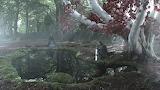 GOT - weirwood winterfell