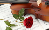 ~ Violin and a Red Rose ~