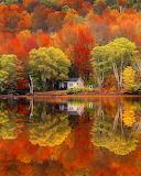 A mirrored lake in fall