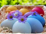 Easter 208