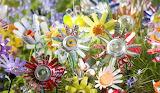 Blooming Aluminium & Plastic