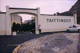 Europe - France - Reims - Tattinger Champagne