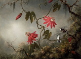 Mj heade passion flowers