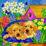 ☺♥ A lovely spring...