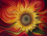 ☺ Sunflower...