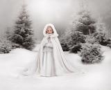 Little Snow Princess