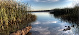 Lake Mineral Wells State Park (2)