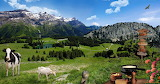 Farm-animals-on-the-mountain-meadow